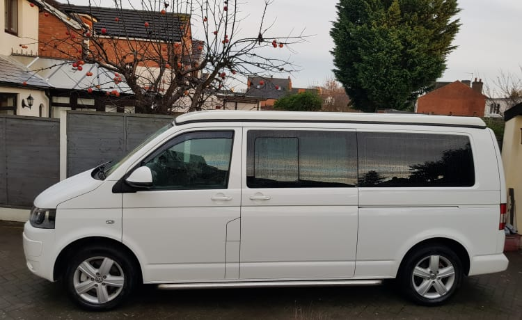 Vw T5 campervan hire