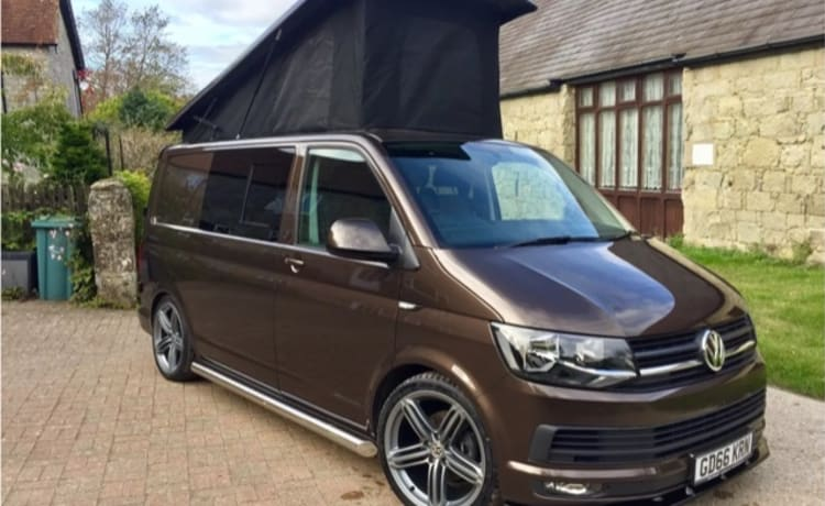 Billy – Billy Brown Bus VW T6 Highline Camper Van
