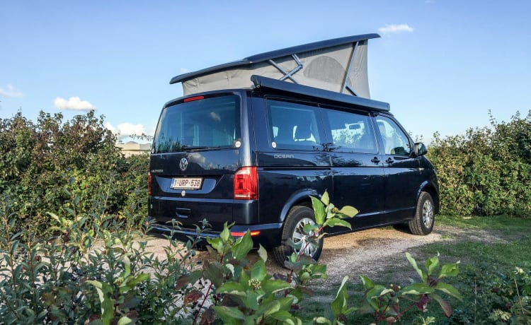 Brand new Volkswagen California for rent