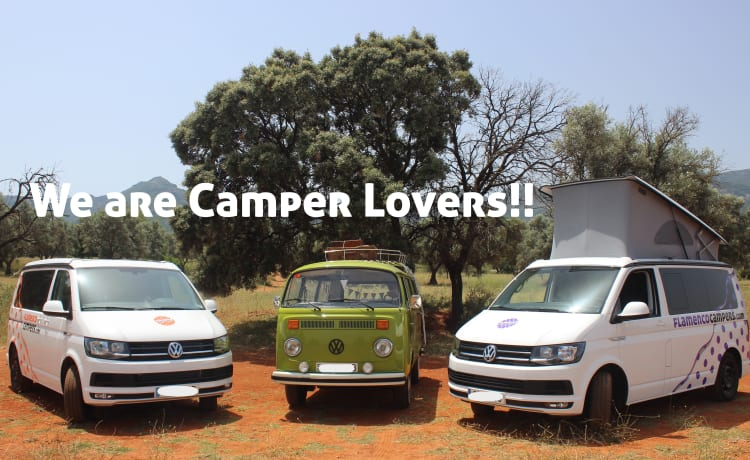 """CARMELA"" VW T6 CALI BEACH CAMPER – Flamenco Campers, Rent a camper, explore Andalusia."