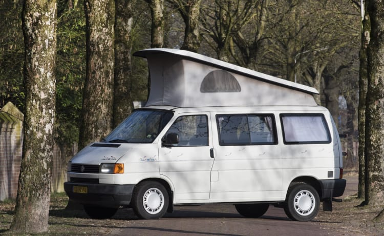 California Dreamin '- VW T4 California accogliente e robusta con tetto a pelo
