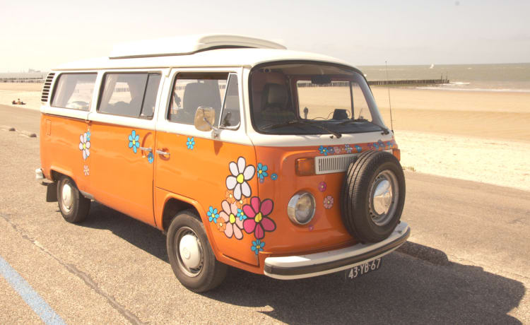 Bloemenbus – Classic Volkswagen T2 for rent! For the true enthusiasts