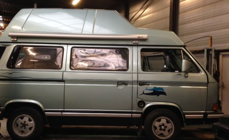 Dofijntjes camper – Practical Volkswagen Westfalia T3 bus camper with high roof