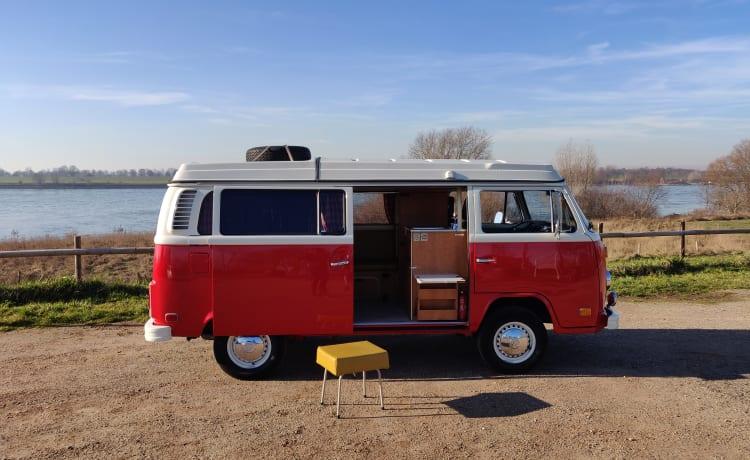 Marley – Vintage VW t2
