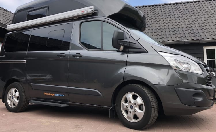 Luxury Compact Bus Camper - Ford Nugget Westfalia - 4 persons