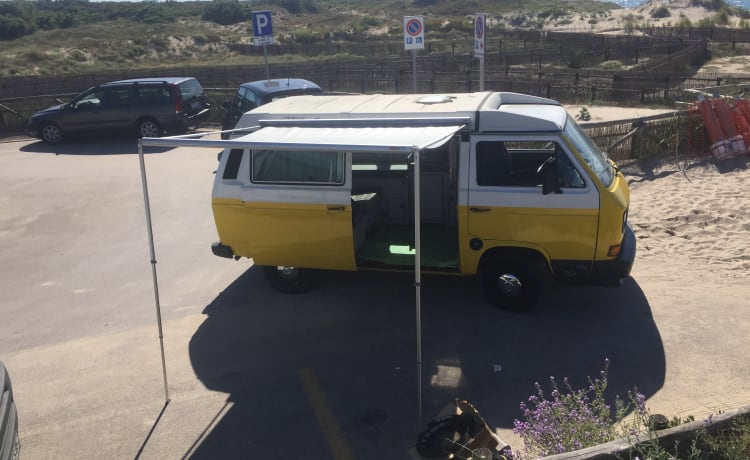 Vintage in freedom - T3 Westfalia