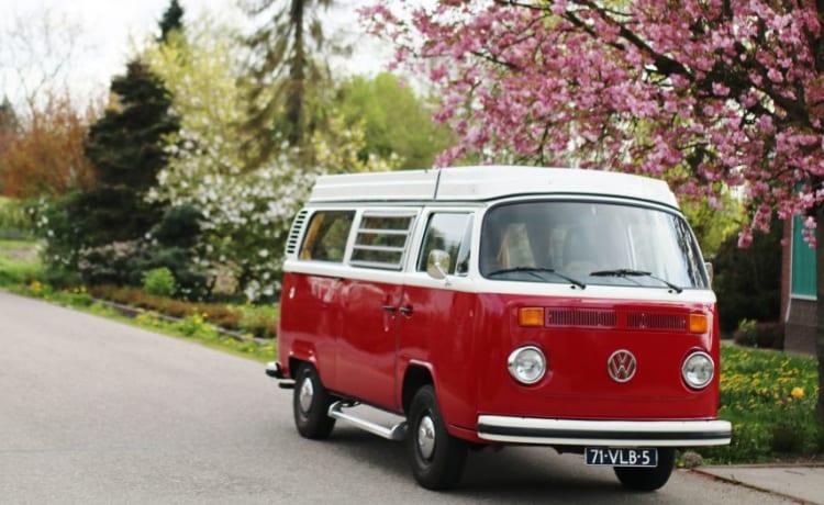 Volkswagen T2 Berty