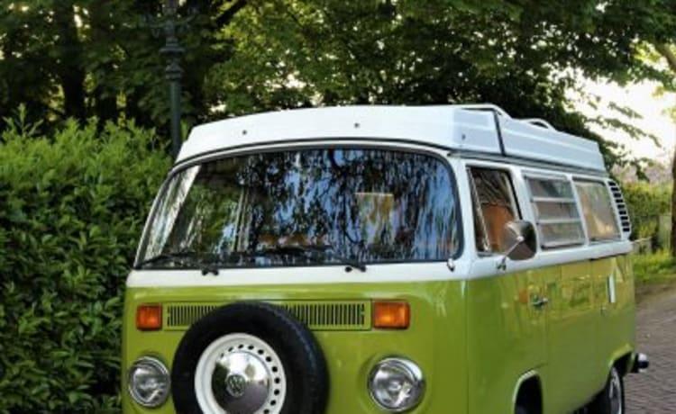 Volkswagen bus Bea