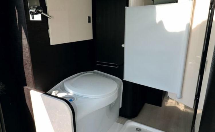 Marcel – Volkswagen Westfalia (California) met ingebouwd toilet en warm water