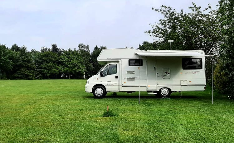 Ellie The Elddis  – Peugeot Autoquest 180 6 ancoraggio