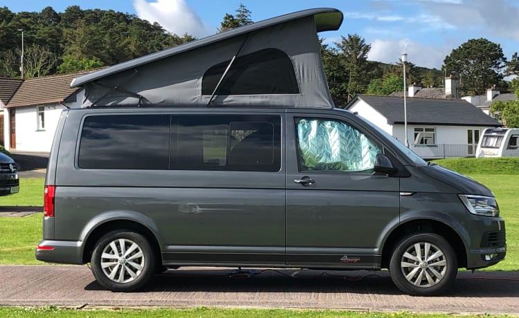 Bertie – 4 posti letto VW Transporter T6