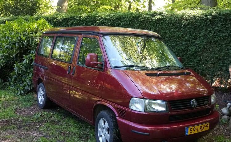 Busje Wijsneus – VW Westfalia California Coach camper bus 1999 (no bookings for 2020!)