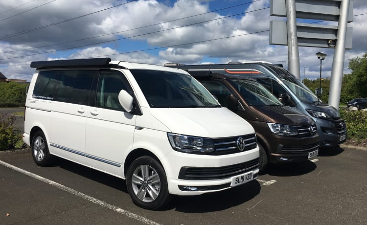 Cool White  – VW California automatic  Camper Van Sleeps and seats 4