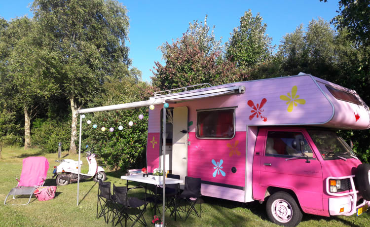 Gave roze retro romantische unieke camper, zo zie je er maar 1 !