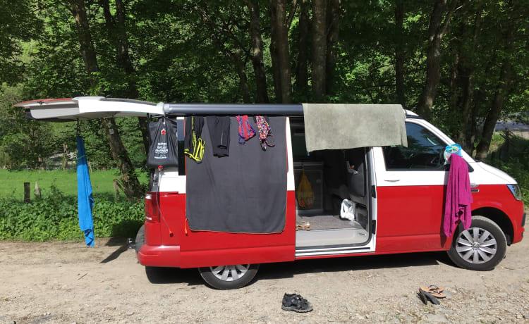 California Bulli – Volkswagen California OCEAN Bulli Red&White full option