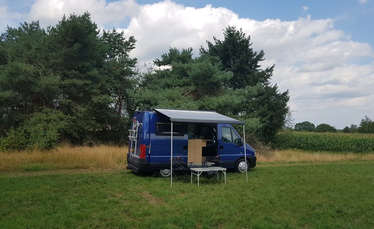 Trentino – Compacte multifunctionele 4 persoons buscamper