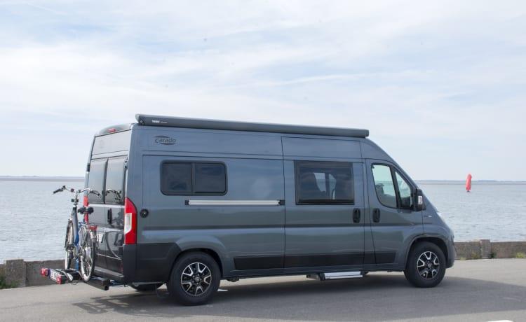 Compacte buscamper 2020 met automaat – Nieuwe Luxe Buscamper Carado Vlow