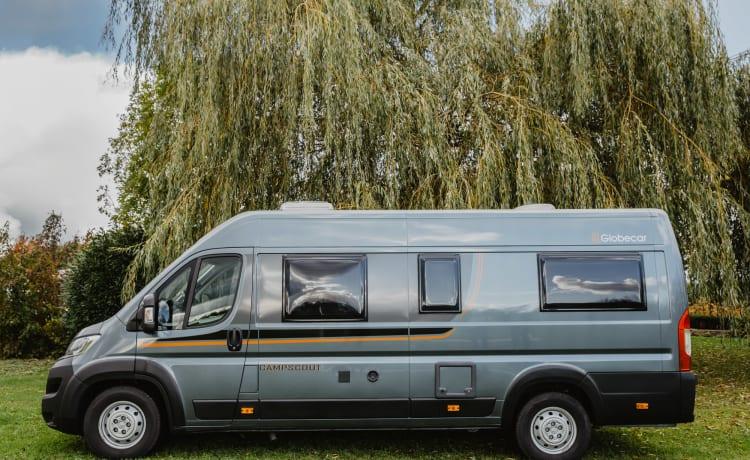 Camper bus Pössl di lusso (15)