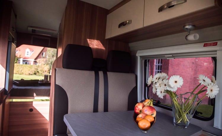 Bus Wohnmobil für 2 Personen. Festbett / SC4