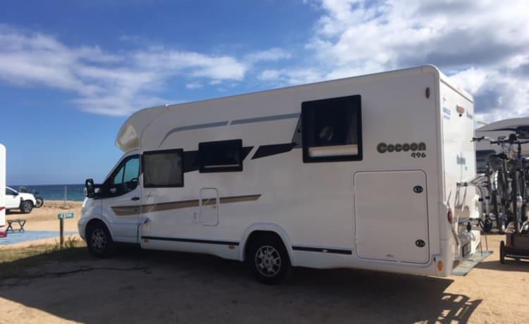 Semi integraal – Ford Cocoon 496, AUTOMAT, Benimar 2019