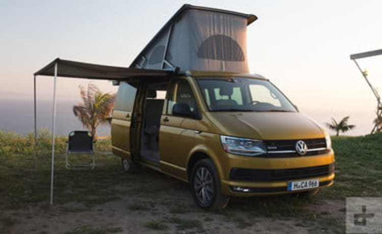 VW California automatic Ocean Spec   2019 T6 campervan