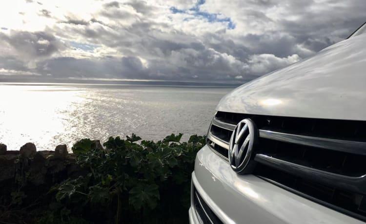 Bailey  – Luxury VW Campervan Hire
