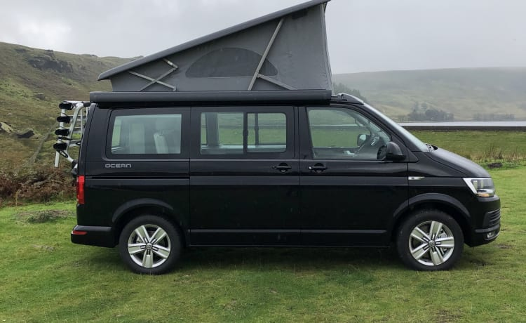 A Genuine VW California Ocean 2019
