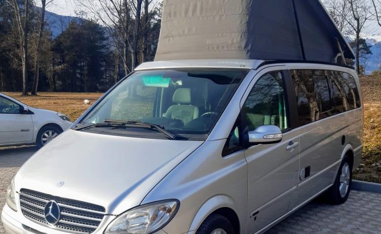 Silvio – Mercedes Viano Marco Polo per le tue avventure!!!