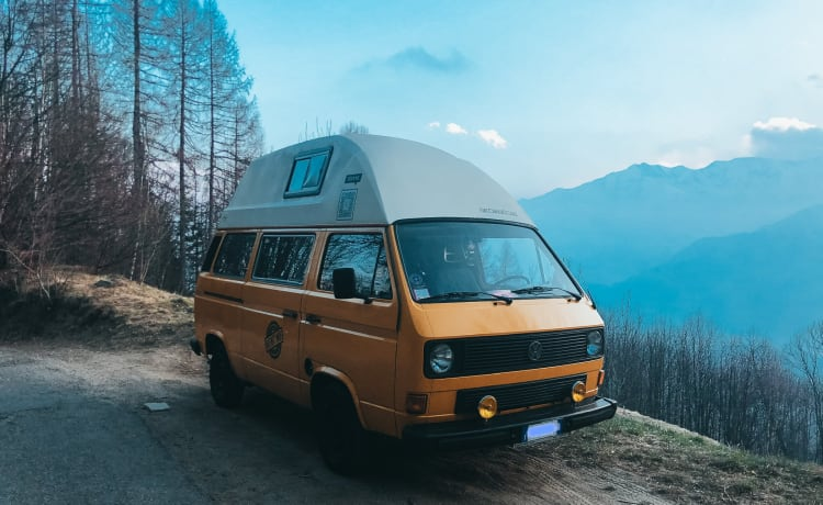 EFESTO – Volkswagen T3 - Westfalia camper with raised roof