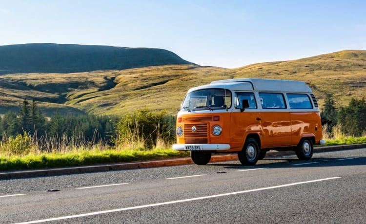 Terry - Retro VW T2 Bay Window Camper!