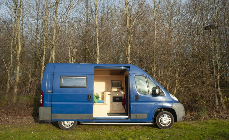 Mr. Bamboo – Custom Built Bamboo Camper with Large Bed!