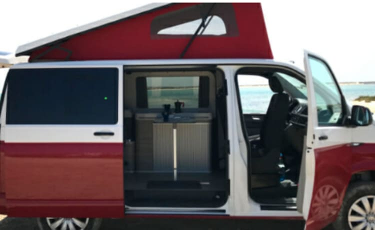 VW T6 Beach - Amsterdam