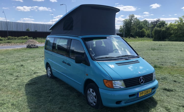 Mercedes Westfalia Marco Polo. The adventure can begin!