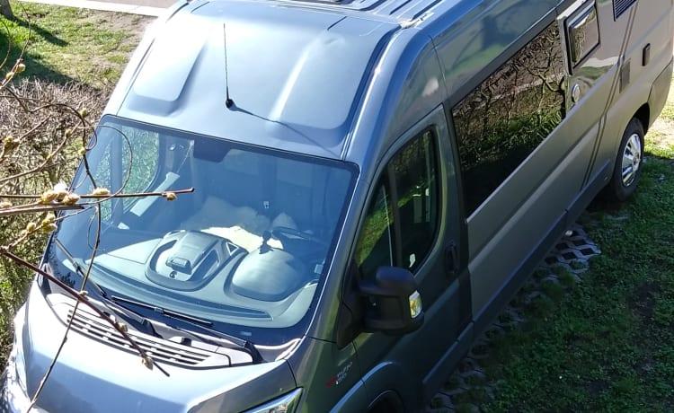 ' A quarter dollar ' – Campervan Fiat Ducato