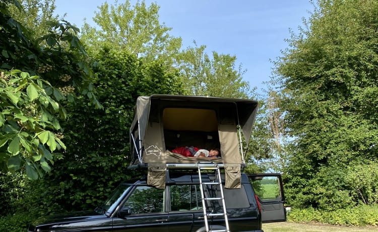 Wolf - Adventure & freedom with a Land Rover with roof tent!