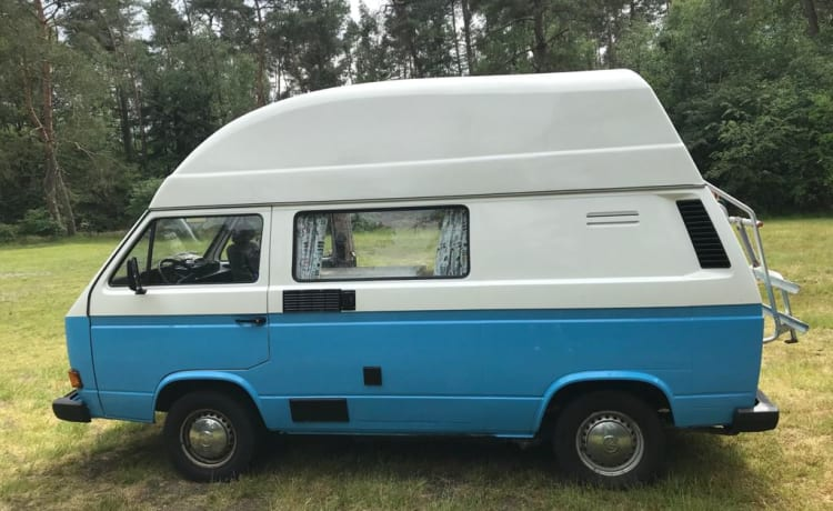 Frenk – Frenk, a beautiful T3 camper is looking for travel companions
