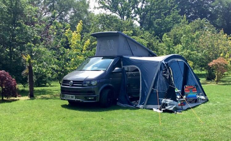 Bailey  – 2019 VW T6.1 Campervan