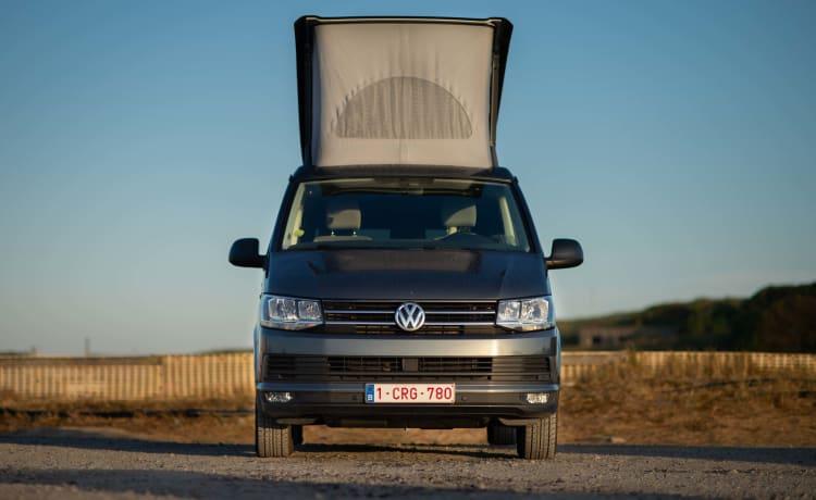 VW California - Ocean - DSG