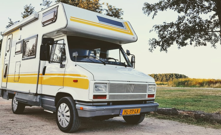 """Yellow Mellow – Measure """"Yellow Mellow""""; Retro camper for adventurers. Pets allowed!"""