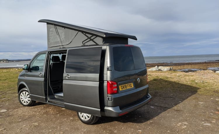 Camper VW del 2018