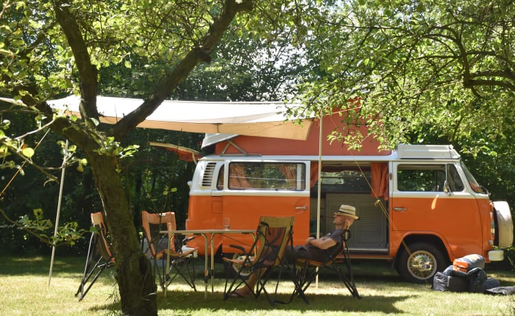Willem – Volkswagen T2 - welcome to the 1970s