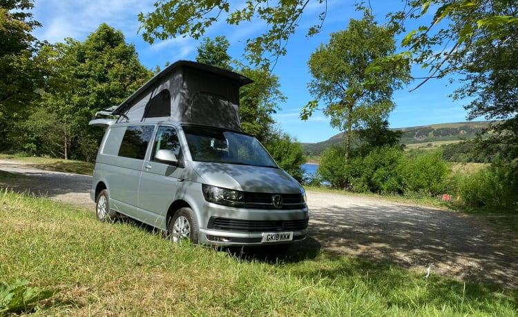Destiny VW Campervan hire