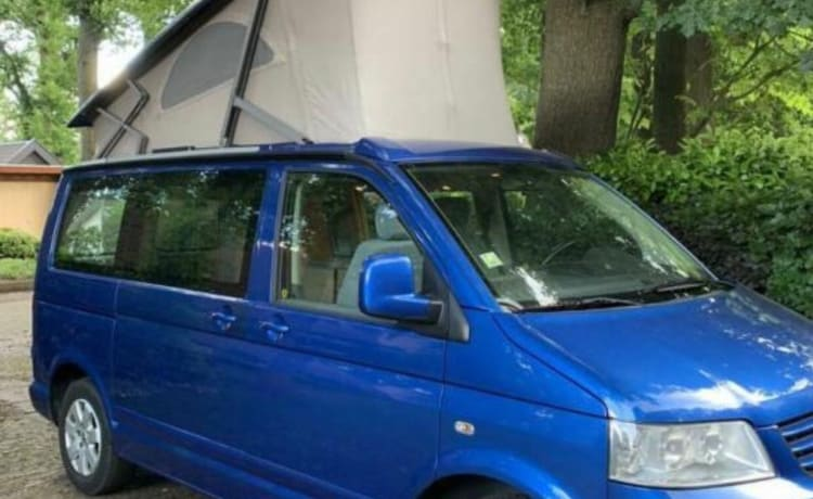 Volkswagen T5 California - Donkerblauw – Volkswagen California T5 - Blue - Factory camper incl Day insurance