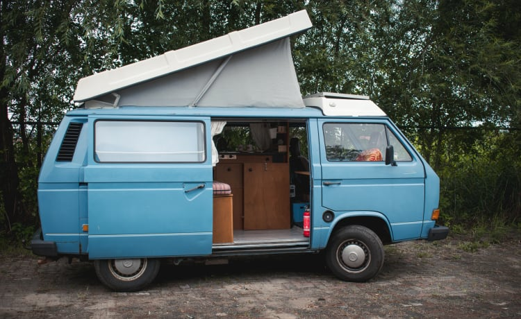Aliforni – Reliable Volkswagen T3