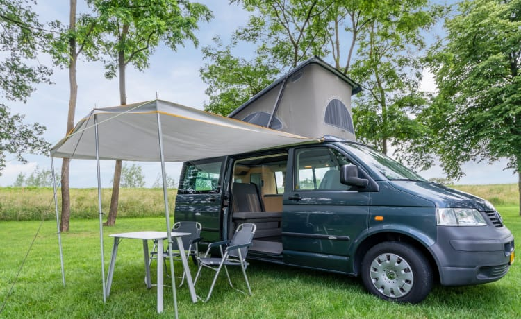 Volkswagen California camper bus (4 persons)