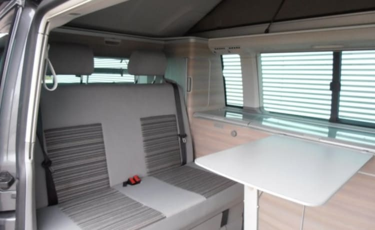 Volkswagen T5 California, with air conditioning