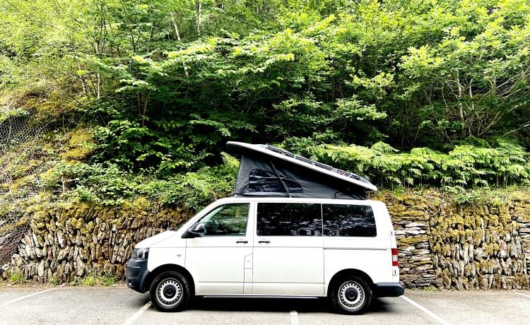VW T5 Campervan - 4 posti letto