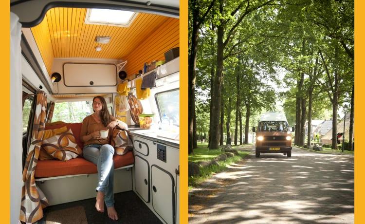 Bertus – Retro Volkswagen T3 camper