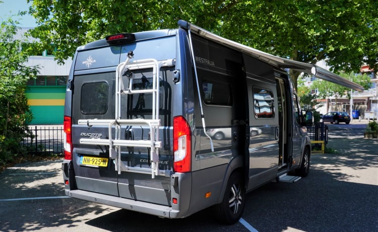 AUTOMATIC - Luxury 2-3 person Bus camper with the powerful 177 hp Euro6 engine