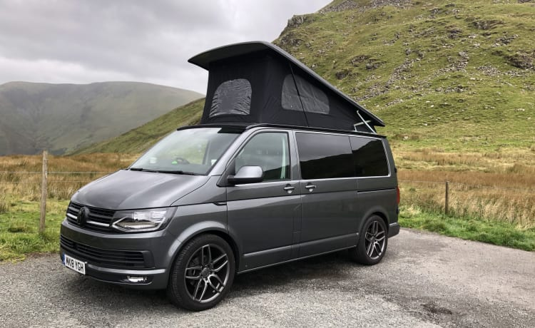 Storm – 'Here comes the STORM' 2018 VW T6 camper